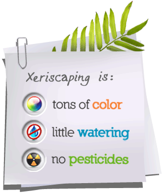 Xeriscaping is: Tons of color, little watering, no pesticides.